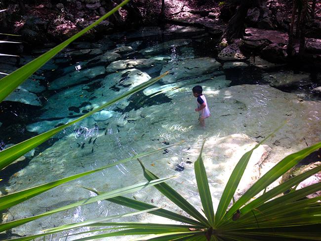 natural fish spa cancun