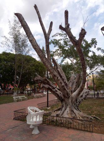 Парк в городке Вальядолид