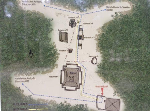 Схема центра раскопок Калакмуль
