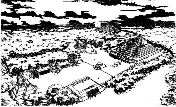 Рисунок Калакмуля в период расцвета