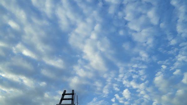 Путешествие в небо. Мексика, Калакмуль.