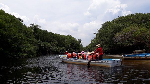 Маленькая шлюпка и крокодилы. Опасные экскурсии в Мексике.