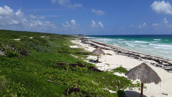 Восточные пляжи острова Косумель. Хорошая дорога, но не пригодны для купания.