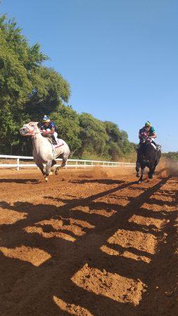 Соревнование по скачкам в Мексике на лошадях.