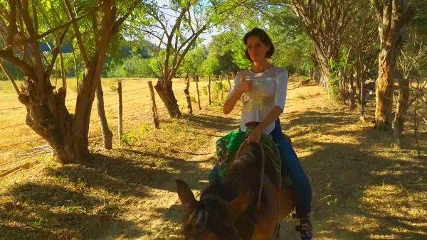 Трекинг на лошадях в Мексике.