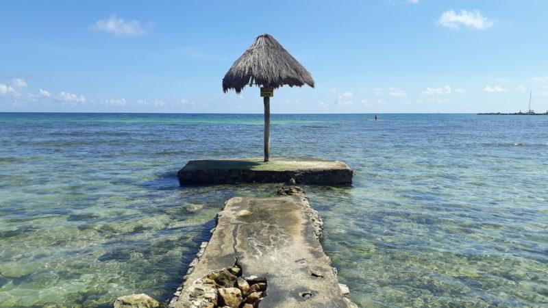 Пляжи Мексики. Как обстоят дела с саргасами.