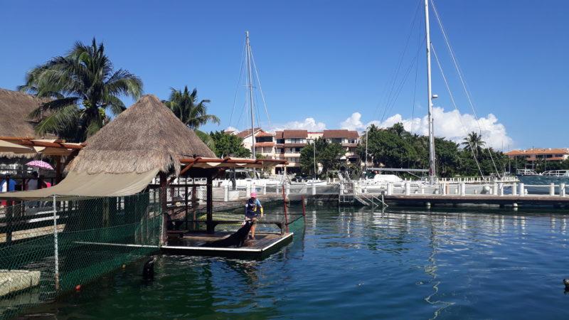 Яхт клуб в Пуэрто Авентурас.
