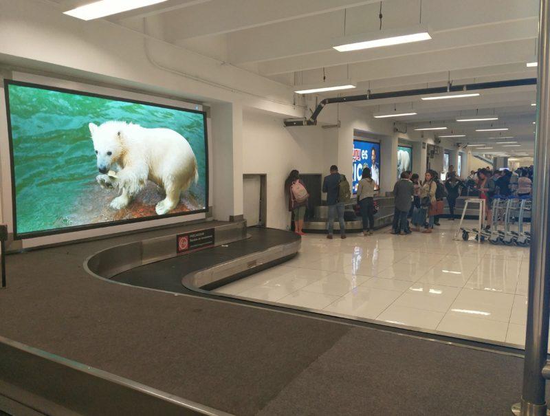 Аэропорт Мехико. Конвейерная лента получения багажа.