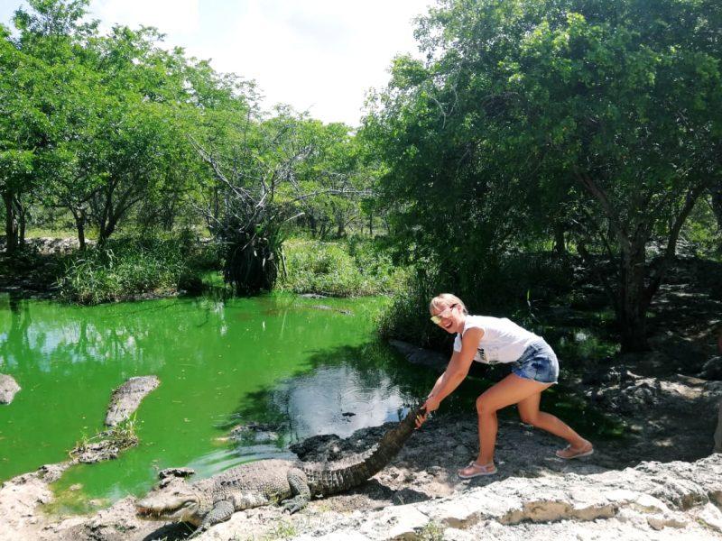 Ферма крокодилов в Мексике