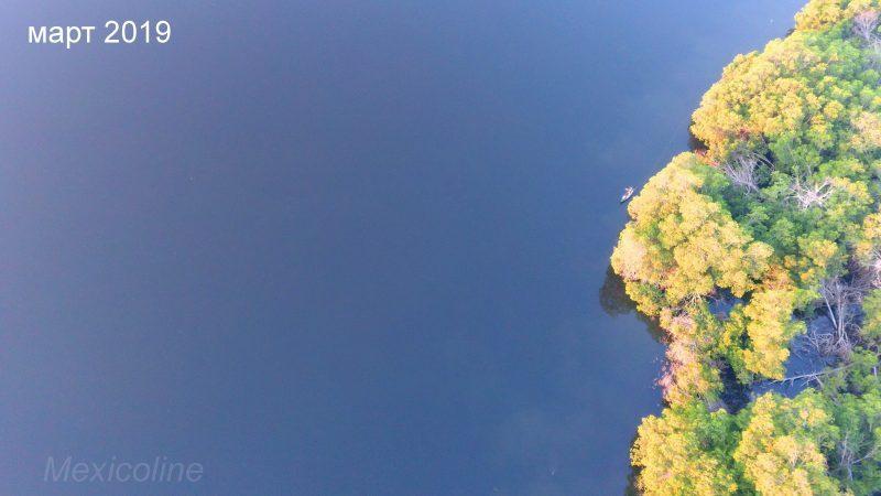 Лагуна в Мексике со светящимся планктоном.